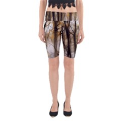 Fall Forest Artistic Background Yoga Cropped Leggings