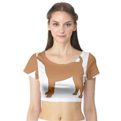 Chinese Shar Pei Silo Color Short Sleeve Crop Top (Tight Fit)