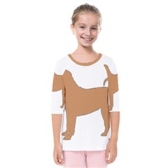 Chinese Shar Pei Silo Color Kids  Quarter Sleeve Raglan Tee