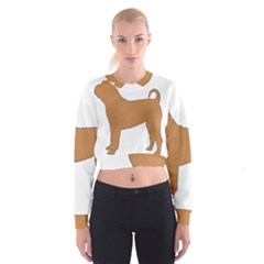 Chinese Shar Pei Silo Color Cropped Sweatshirt