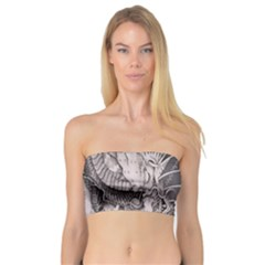 Chinese Dragon Tattoo Bandeau Top