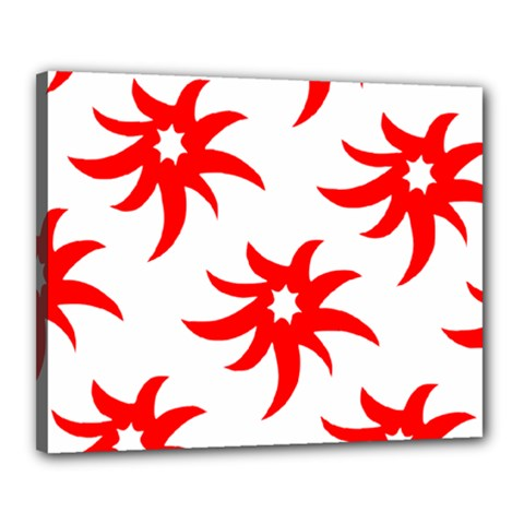 Star Figure Form Pattern Structure Canvas 20  x 16