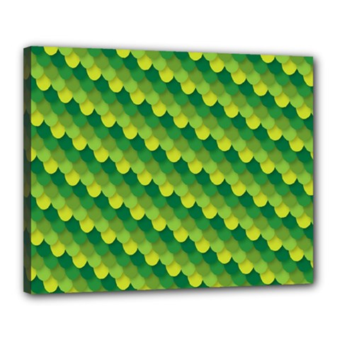 Dragon Scale Scales Pattern Canvas 20  x 16