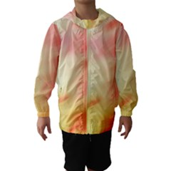 Background Abstract Texture Pattern Hooded Wind Breaker (kids)