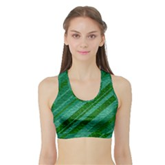 Stripes Course Texture Background Sports Bra With Border