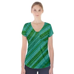 Stripes Course Texture Background Short Sleeve Front Detail Top