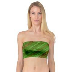 Stripes Course Texture Background Bandeau Top