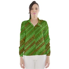 Stripes Course Texture Background Wind Breaker (women)
