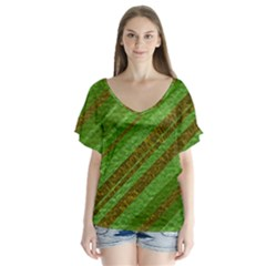 Stripes Course Texture Background Flutter Sleeve Top