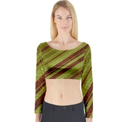 Stripes Course Texture Background Long Sleeve Crop Top