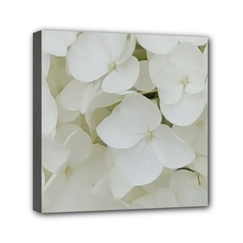 Hydrangea Flowers Blossom White Floral Photography Elegant Bridal Chic  Mini Canvas 6  x 6