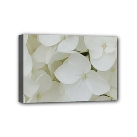 Hydrangea Flowers Blossom White Floral Photography Elegant Bridal Chic  Mini Canvas 6  x 4