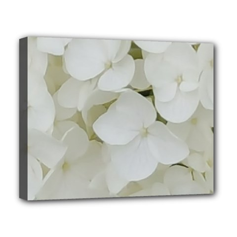 Hydrangea Flowers Blossom White Floral Photography Elegant Bridal Chic  Deluxe Canvas 20  x 16