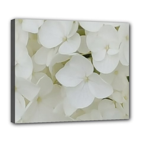 Hydrangea Flowers Blossom White Floral Photography Elegant Bridal Chic  Deluxe Canvas 24  x 20