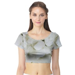 Hydrangea Flowers Blossom White Floral Photography Elegant Bridal Chic  Short Sleeve Crop Top (Tight Fit)