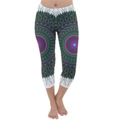 Pattern District Background Capri Winter Leggings