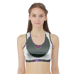 Pattern District Background Sports Bra with Border