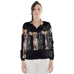Chihuahua Wind Breaker (Women)