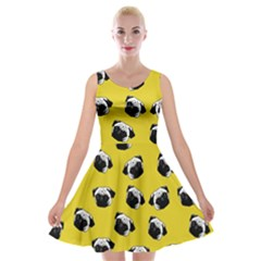 Pug dog pattern Velvet Skater Dress