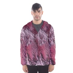 Texture Background Hooded Wind Breaker (Men)