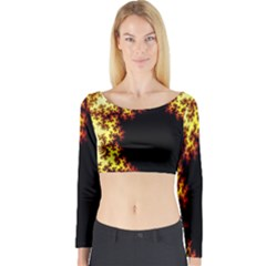 A Fractal Image Long Sleeve Crop Top