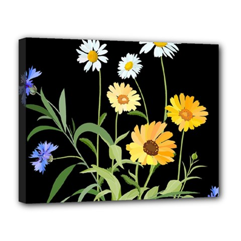 Flowers Of The Field Canvas 14  x 11