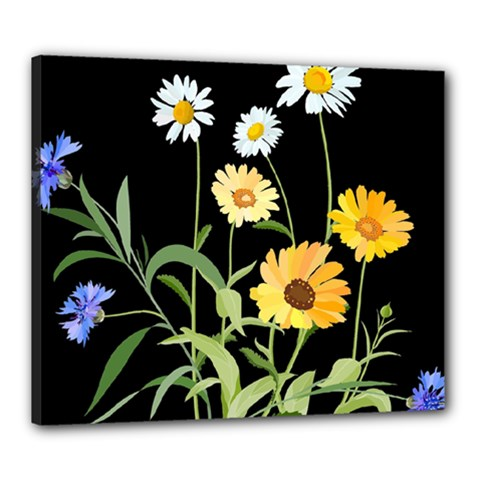 Flowers Of The Field Canvas 24  X 20