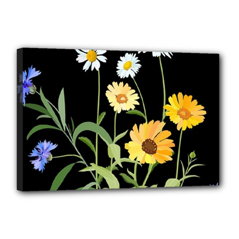 Flowers Of The Field Canvas 18  X 12