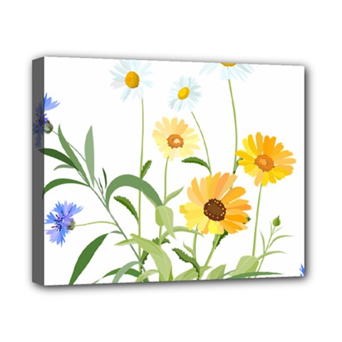 Flowers Flower Of The Field Canvas 10  x 8