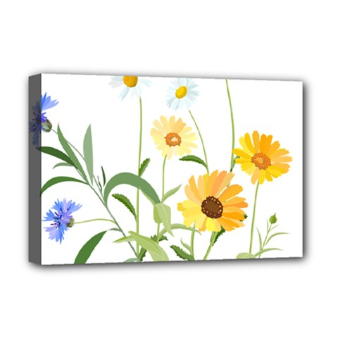 Flowers Flower Of The Field Deluxe Canvas 18  x 12