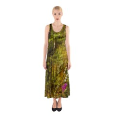 Dragonfly Dragonfly Wing Insect Sleeveless Maxi Dress
