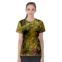 Dragonfly Dragonfly Wing Insect Women s Sport Mesh Tee