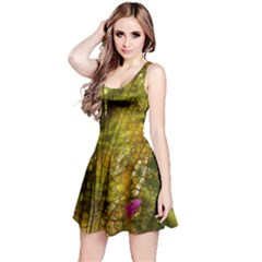 Dragonfly Dragonfly Wing Insect Reversible Sleeveless Dress