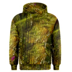 Dragonfly Dragonfly Wing Insect Men s Pullover Hoodie