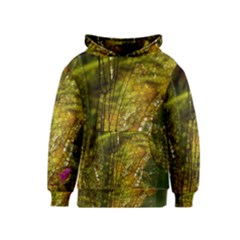 Dragonfly Dragonfly Wing Insect Kids  Pullover Hoodie