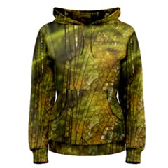 Dragonfly Dragonfly Wing Insect Women s Pullover Hoodie