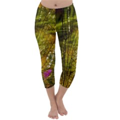 Dragonfly Dragonfly Wing Insect Capri Winter Leggings