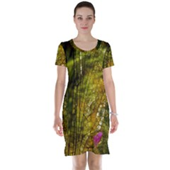 Dragonfly Dragonfly Wing Insect Short Sleeve Nightdress