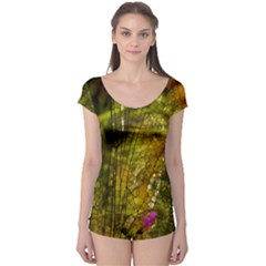 Dragonfly Dragonfly Wing Insect Boyleg Leotard