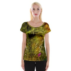 Dragonfly Dragonfly Wing Insect Women s Cap Sleeve Top