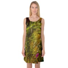 Dragonfly Dragonfly Wing Insect Sleeveless Satin Nightdress