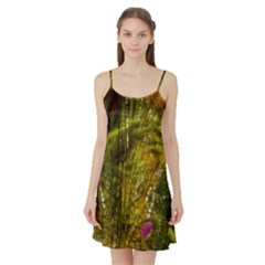 Dragonfly Dragonfly Wing Insect Satin Night Slip