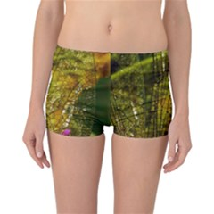 Dragonfly Dragonfly Wing Insect Reversible Bikini Bottoms