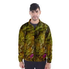 Dragonfly Dragonfly Wing Insect Wind Breaker (Men)
