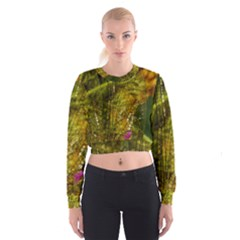 Dragonfly Dragonfly Wing Insect Cropped Sweatshirt