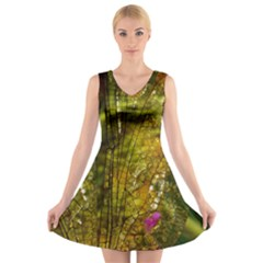 Dragonfly Dragonfly Wing Insect V Neck Sleeveless Skater Dress