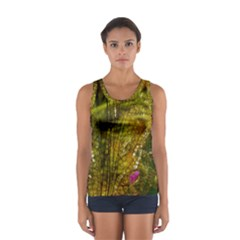 Dragonfly Dragonfly Wing Insect Women s Sport Tank Top