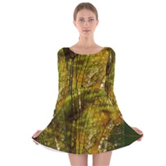 Dragonfly Dragonfly Wing Insect Long Sleeve Velvet Skater Dress