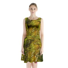 Dragonfly Dragonfly Wing Insect Sleeveless Chiffon Waist Tie Dress