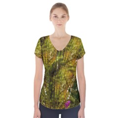 Dragonfly Dragonfly Wing Insect Short Sleeve Front Detail Top